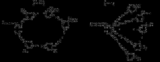 Менеджер управления распределенными вычислениями в локальной сети